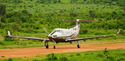 Bush Flight From The Serengeti