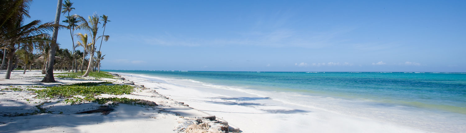 White Sandy Zanzibar Beaches