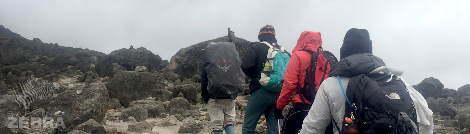trek on mt. kilimanjaro